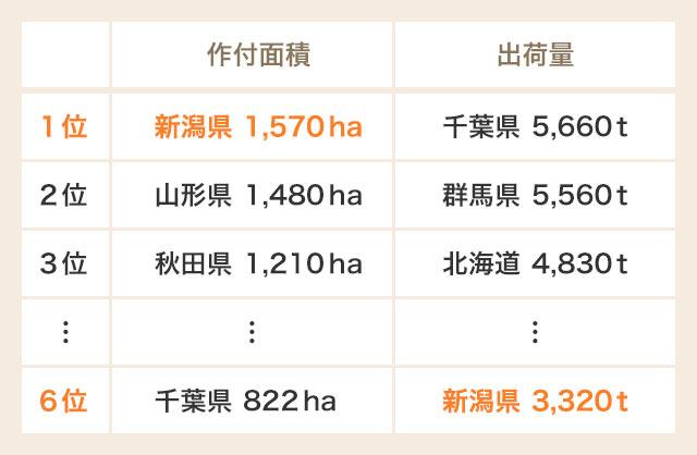 出典:農林水産省「平成28年産野菜生産出荷統計」平成28年産都道府県別の作付面積、10a当たり収量、収穫量及び出荷量(枝豆)