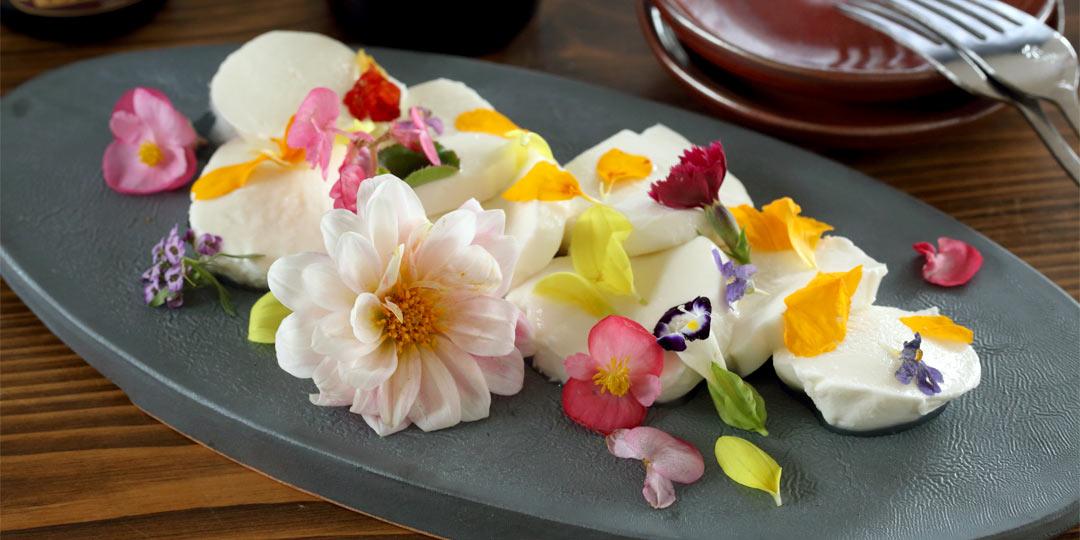華やかな食用花に、稀少な黒まいたけも