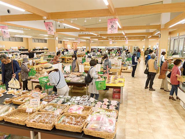 〈あるるんの杜〉は地元野菜を中心に販売する「あるるん畑」と、海産物が揃う「あるるんの海」に分かれています。
