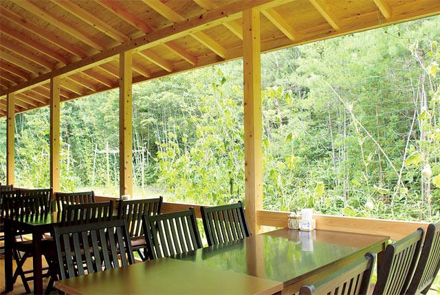 窓の外に爽やかな緑が広がる、開放的な雰囲気も自慢。
