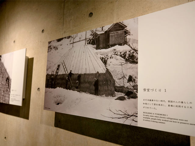 お隣の十日町でつくられていた、カヤやワラで雪の山を覆う伝統的な雪室。