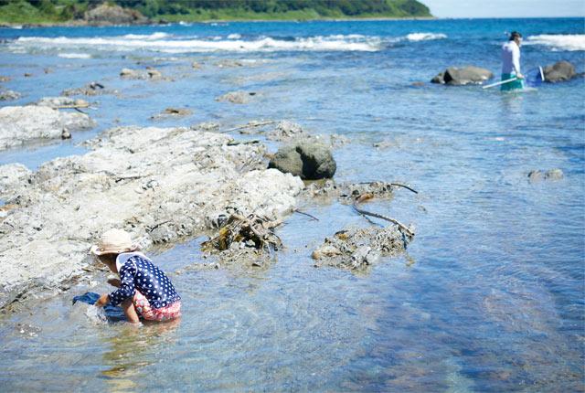 のんびりと海水浴を楽しむ家族連れの姿