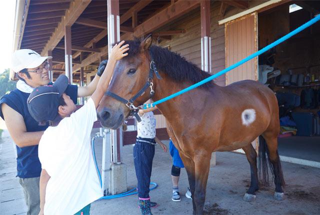 あわしま牧場で馬の世話をする子ども