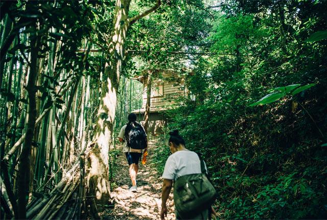 山を分け入っていくような小道を10分ほど上ってたどり着いたマーカス夫妻のご自宅