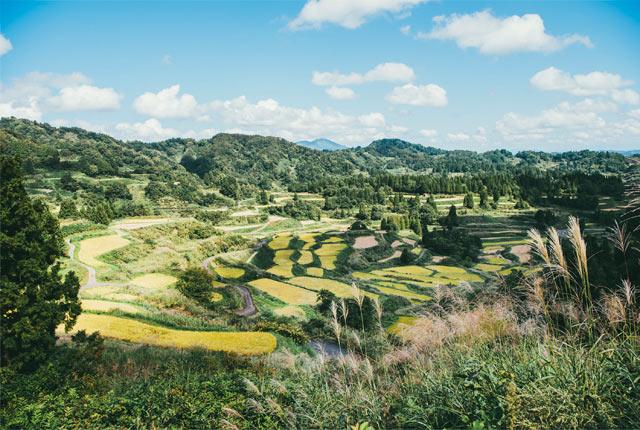 全国でも有数の美しい景観を誇る、星峠の棚田