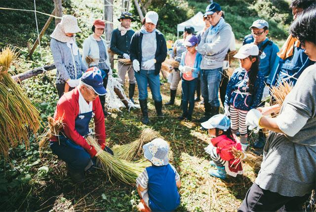 地元スタッフから、刈った稲をわらで束にまとめるための結び方を習う