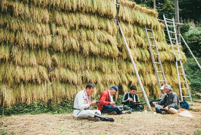 はさがけした稲の前でお弁当を食べる参加者&スタッフ