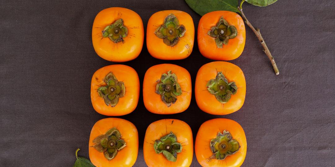 今が旬! とろける食感の「おけさ柿」でフルコースレシピ