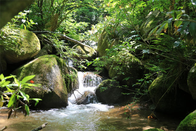 五頭山の麓のあちこちに点在する湧水地
