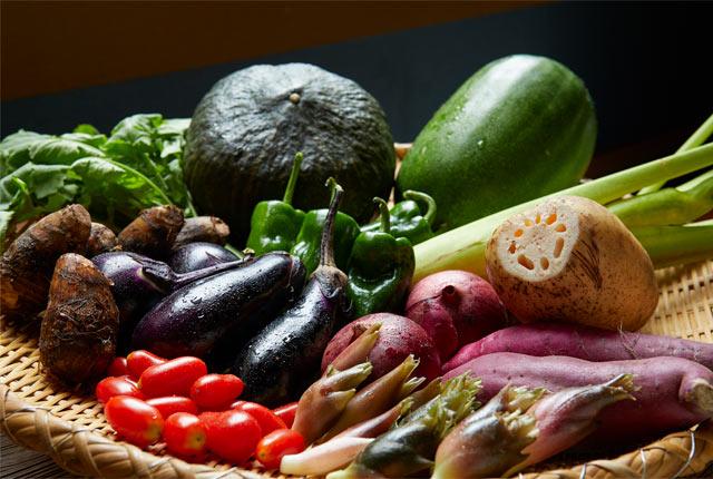 旅館の自家菜園で収穫された野菜