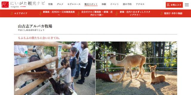 山古志アルパカ牧場『にいがた観光ナビ』【県公式】