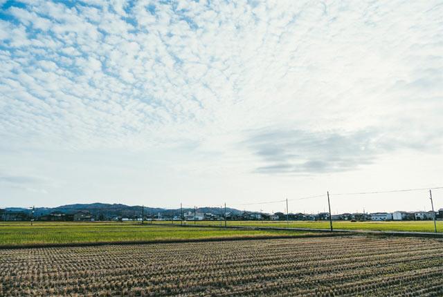 三条市の田園風景