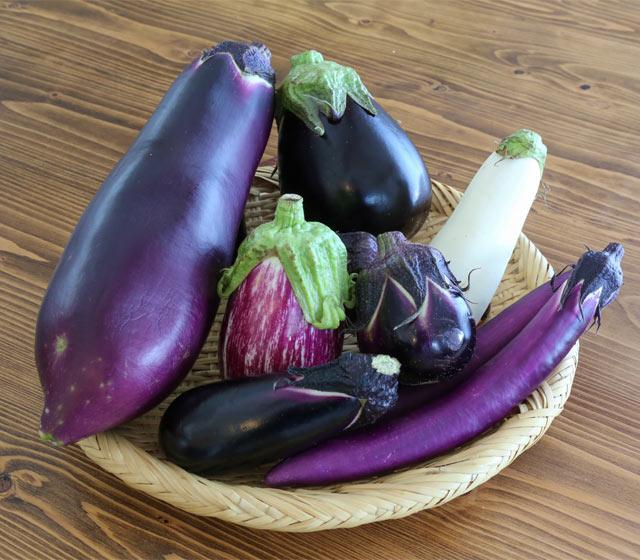 新潟県産なす6品種
