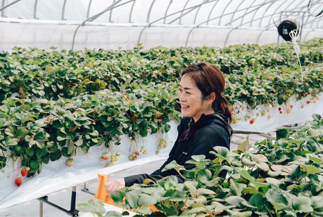 栽培ハウス内で若杉智代子さんにインタビュー