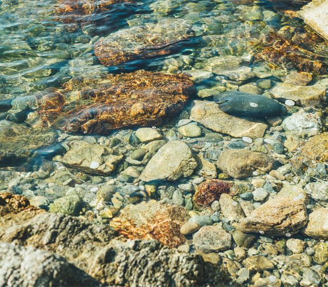 笹川流れ周辺の海