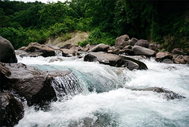 水量豊富な渓流