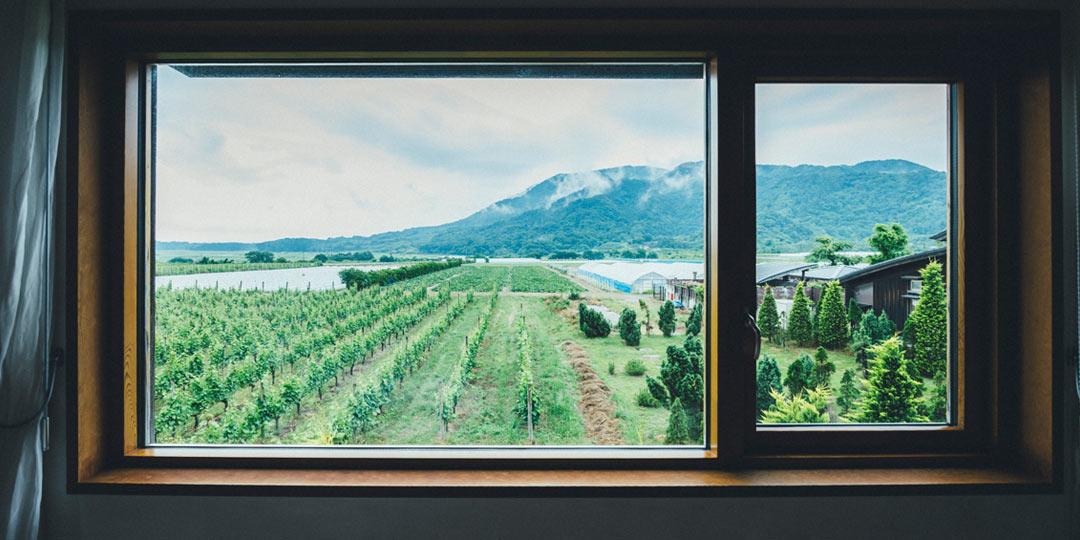 おでかけコロカル新潟編・ブドウ畑のパノラマが望める湯宿〈カーブドッチ ヴィネスパ〉で心ゆくままにゆったり過ごす