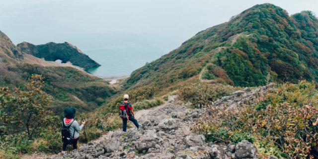 """海抜0メートルから山頂へ!新潟の花々が一堂に集う""""花の山""""トレッキング"""