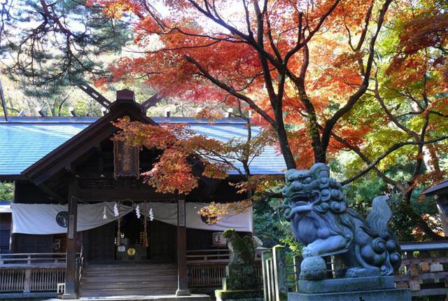 紅葉の季節の本殿