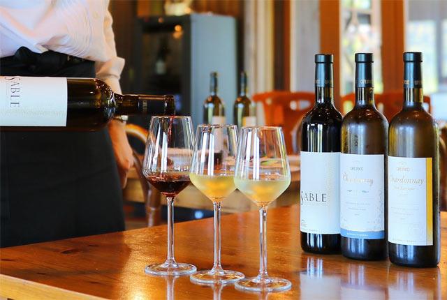 カーブドッチワイナリーで提供されるワイン