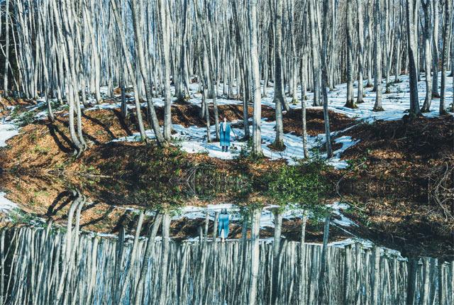 美人林の中にある池が水鏡に