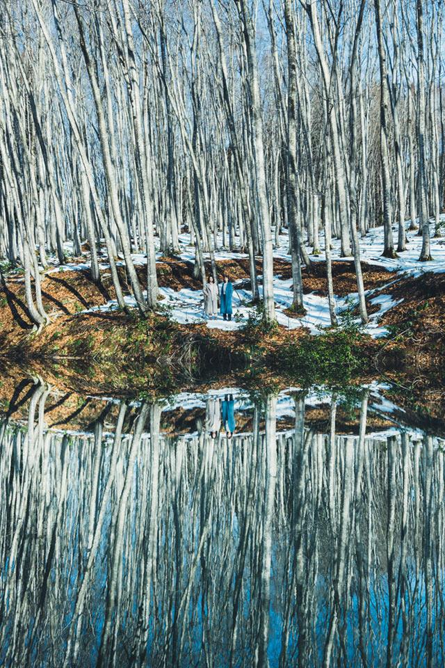 池に鏡写しになったブナ林