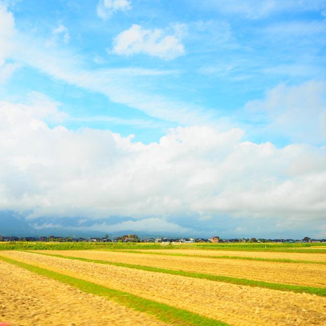佐渡の田園・畑の風景