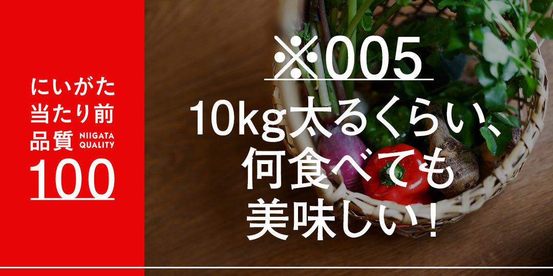quality-100-sekitamasato-ec-2