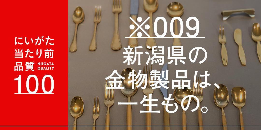 quality-100-kanekochihiro-ec