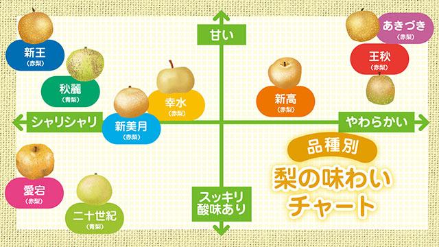 旬の梨の味わいチャート表