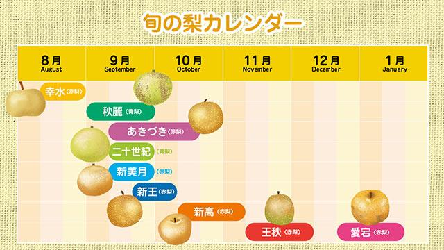 旬の梨カレンダー