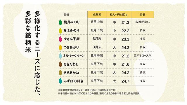 新潟県産のお米の成熟期・粒大・特長の比較表