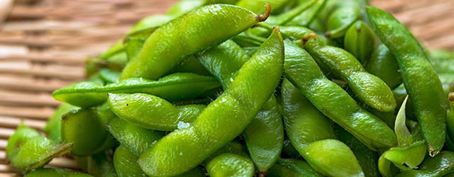 新潟産の枝豆