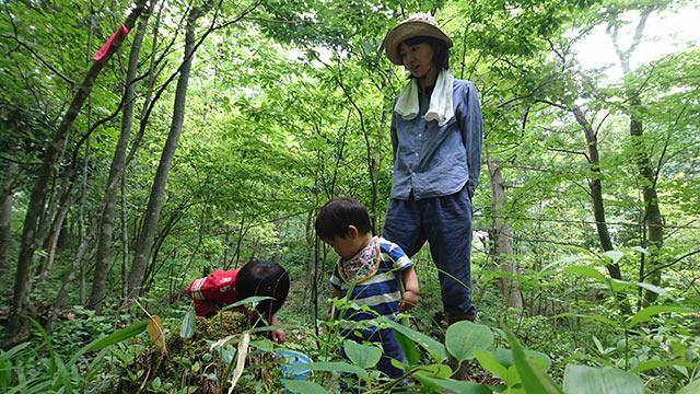 山を散策する子どもたち