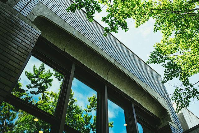 ガラス窓の上のアーチ状の意匠
