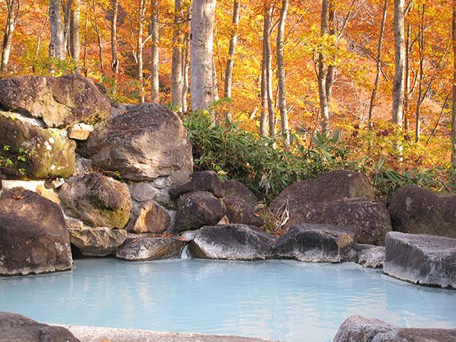 野天温泉〈黄金の湯〉