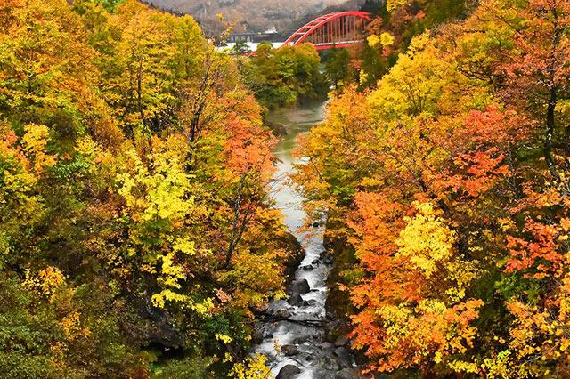 破間川渓谷の紅葉