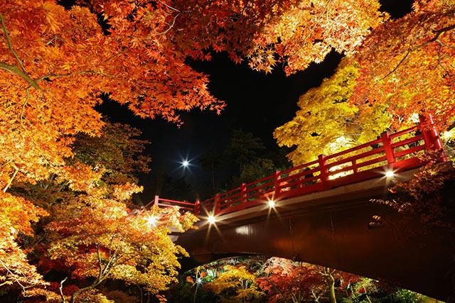 観月橋と紅葉