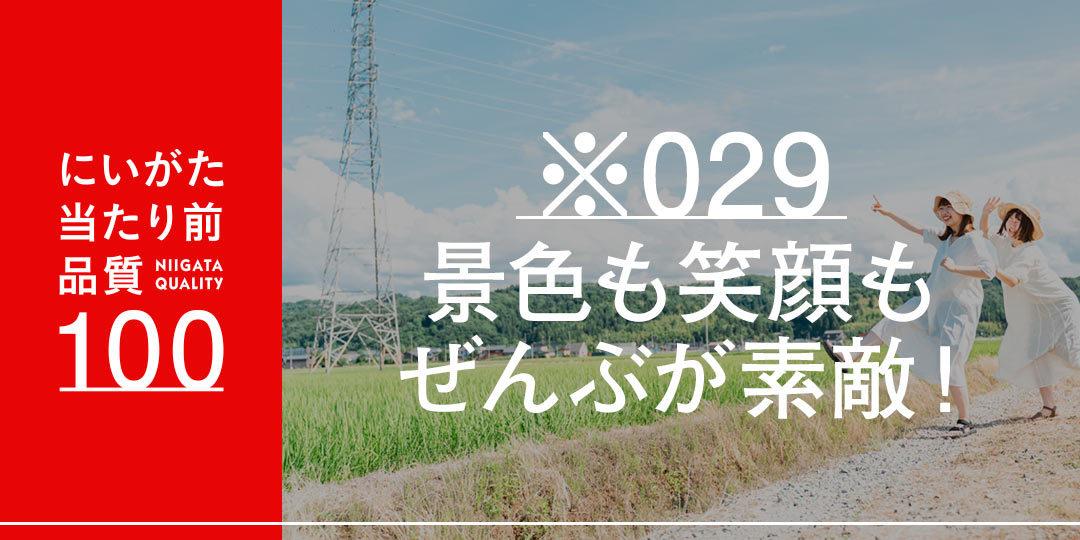 quality-100-nagashimamiki-ec