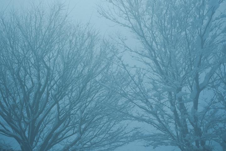 薄暗い雪景色