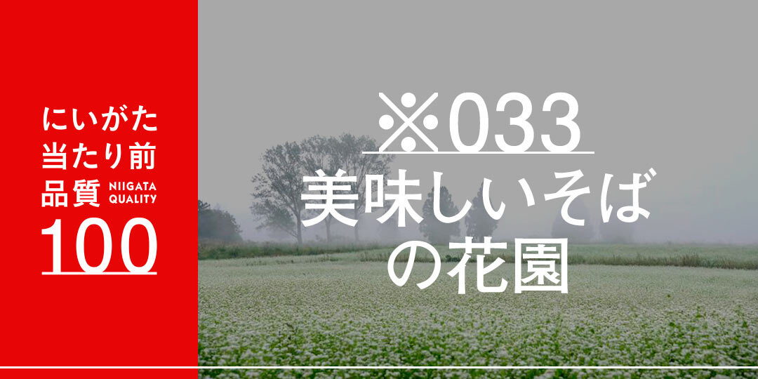 quality-100-nihonnkaisannhonnbaguro-ec