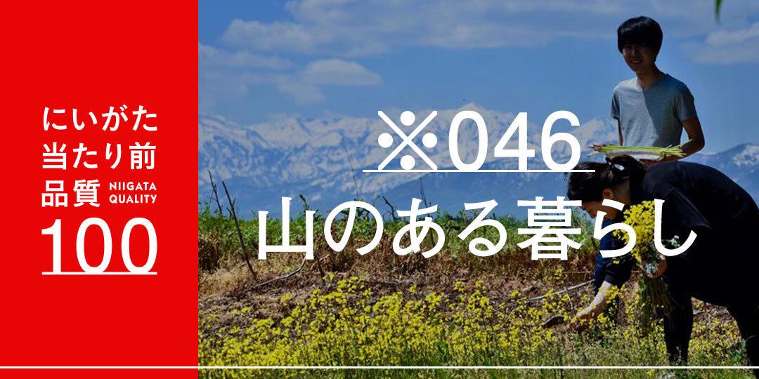 quality-100-akiyama-ec