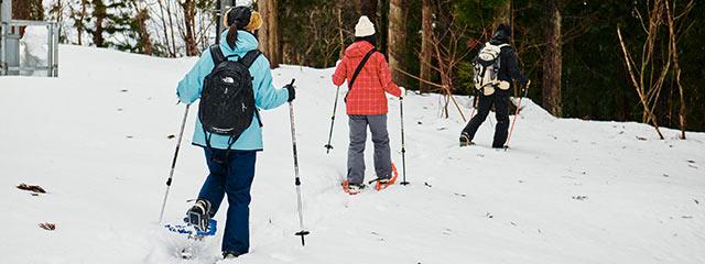 スノーシューで雪山を散策