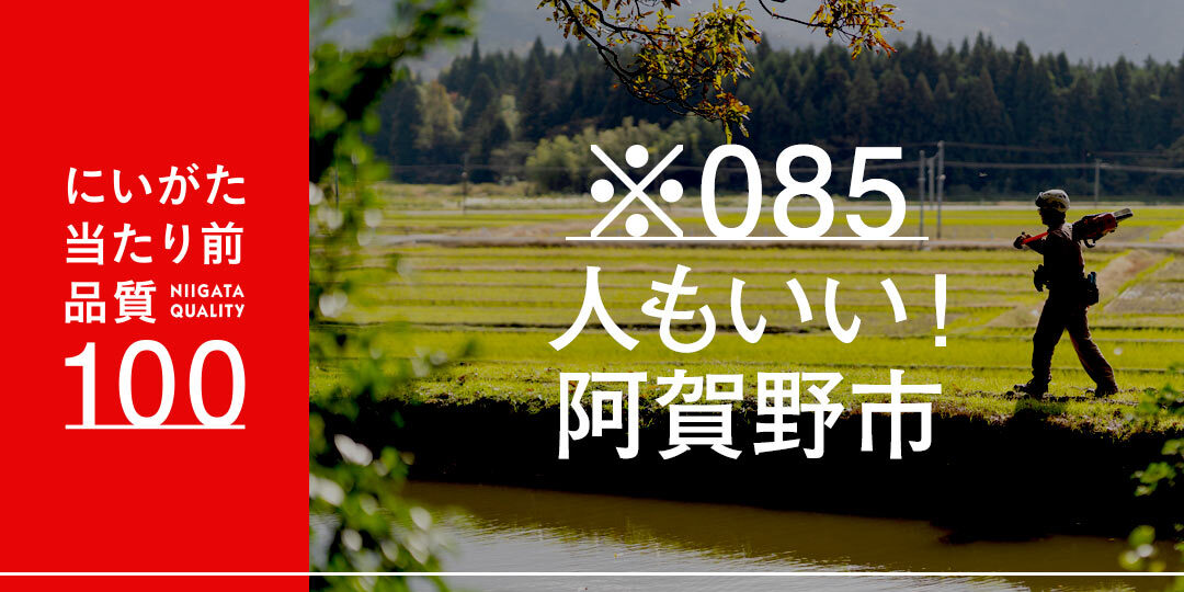 quality-100-085-ec