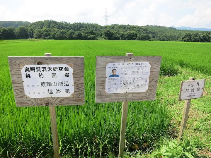 麒麟山酒造の使用米