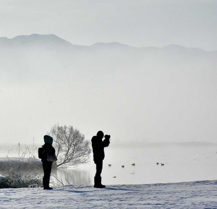 霧の福島潟
