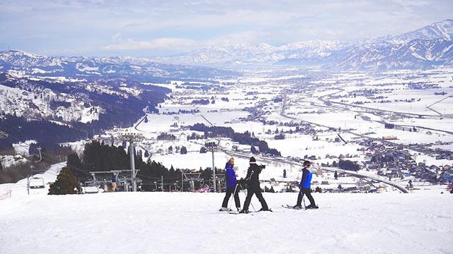 ゲレンデのスキーヤー