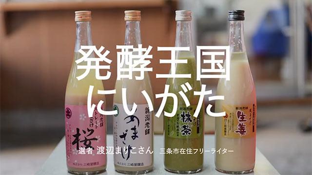 新潟の甘酒4種