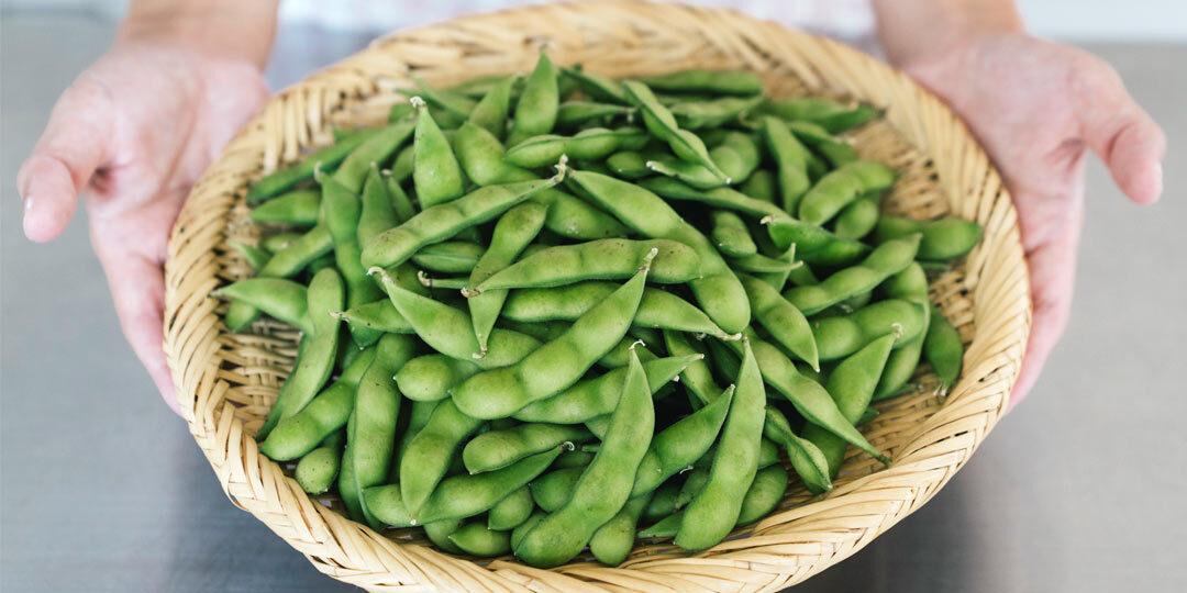 天然の甘みに癒される、新潟の枝豆