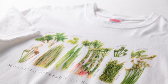 """山菜のTシャツに、米袋バッグ? 希少な織り機を使ったニット商品まで。""""新潟を纏う""""、ユニークなファッションアイテム"""